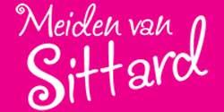 logo_meiden3
